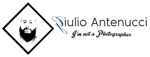 Logo scattoingrandangolo fotografia